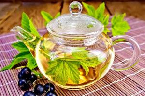 Dlaczego herbata z liśćmi porzeczki jest przydatna