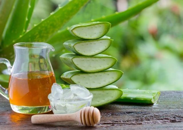 Aloes na stawy – jak przygotować lek