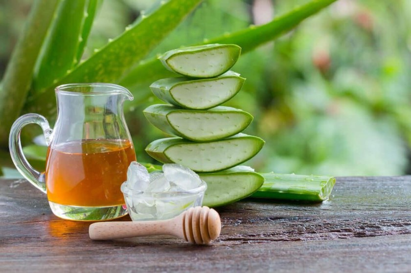 Lecznicza mieszanka aloesu z miodem wzmacnia organizm i pomaga szybko przezwyciężyć chorobę (fot. hochyvseznat.ru)