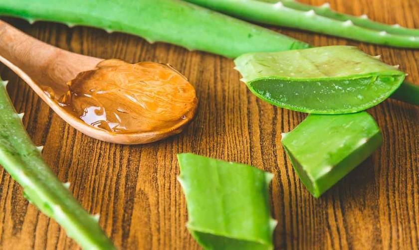 Środki z aloesu i miodu są przyjmowane łyżkami przed posiłkami (zdjęcie: uzdrowienielifeisnatural.com)